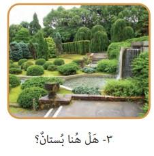 جواب صفحه 17 عربی هفتم