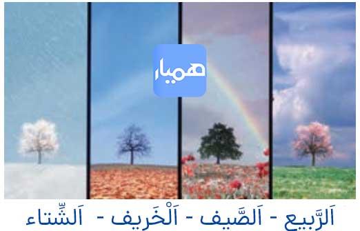 جواب صفحه 18 عربی هشتم