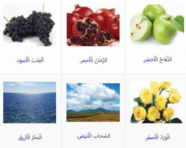 جواب صفحه 10 عربی هشتم