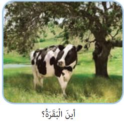 جواب صفحه 30 عربی هفتم