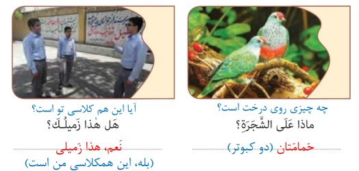 جواب صفحه 9 عربی نهم