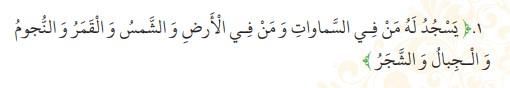 جواب صفحه 5 عربی نهم