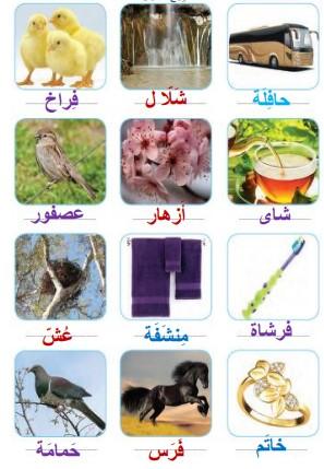 جواب صفحه 105 عربی هشتم