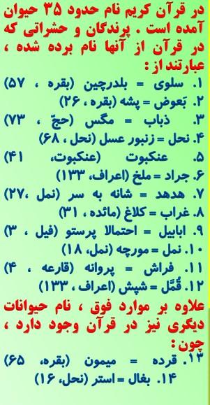 تحقیق کنید عربی هشتم