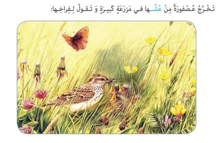 ترجمه صفحه 86 عربی هشتم
