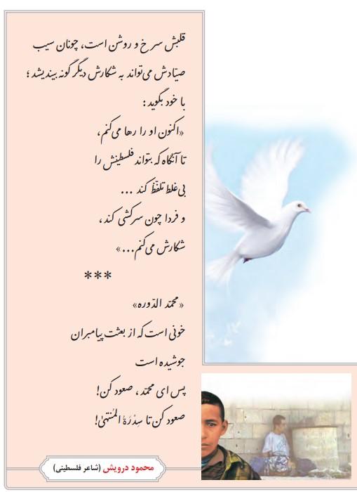 معنی پرنده آزادی فارسی هشتم